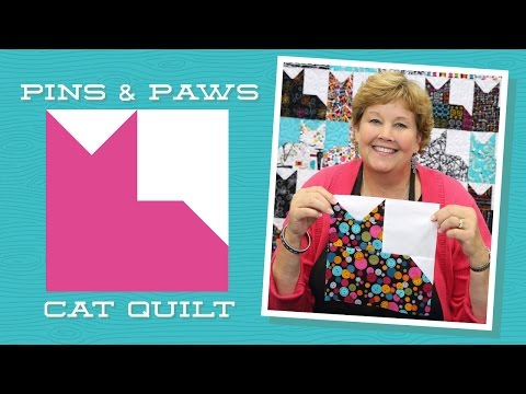 make-an-easy-pins-&-paws-quilt-with-jenny-doan-of-missouri-star-(video-tutorial)