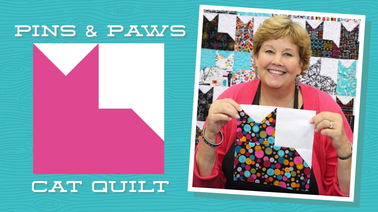 Make An Easy Pins Paws Quilt With Jenny Youtube