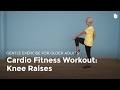 Aerobic Exercise: Knee Raise | Exercise for Older Adults