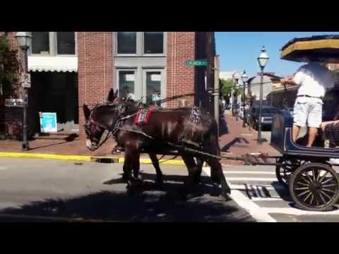 My visit to Charleston, SC 2016