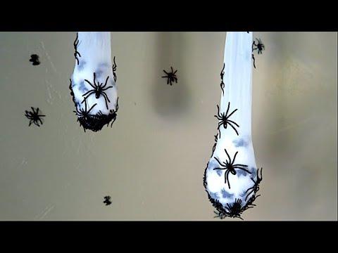 How To Make Creepy Spider Nest Halloween Decoration!