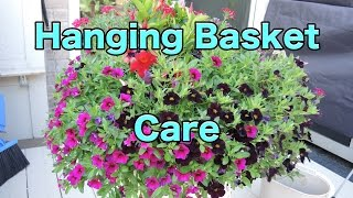 Hanging Basket Care - How-to Maintain Your Hanging Baskets - Pruning