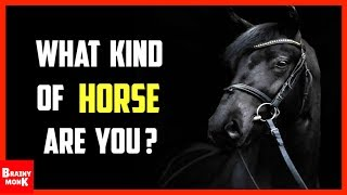 What Kind Of A Horse Are You?   Personality Test
