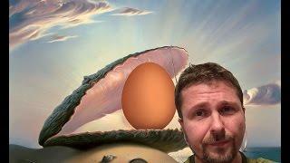 Кто-то мечтает купить яиц
