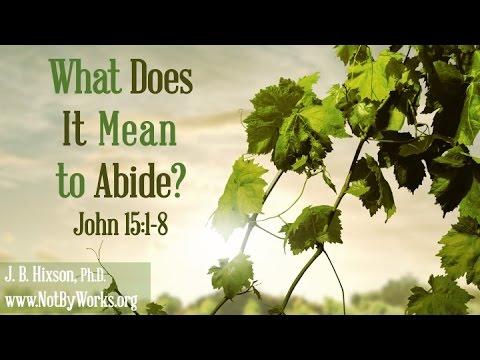 Joh 15 1-8