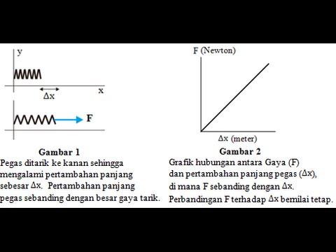 Scribe Huhooke Fisika