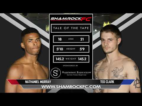 Shamrock 320 F1 Murray Vs Clark