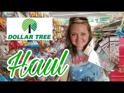 Dollar Tree Shop With Me || First Trip To Dollar Tree In Months