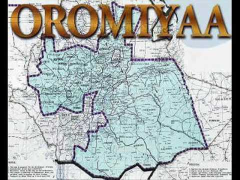 Ethiopian: A leaked draft legislative document of oromia's special interest in Addis Abeba..