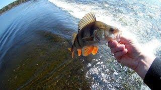 33 Рыбалка на спиннинг/перелив Белоярского водохранилища/сезон 2019