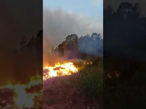 Incêndio ambiental já dura dois dias no interior de Matelândia e Ramilândia