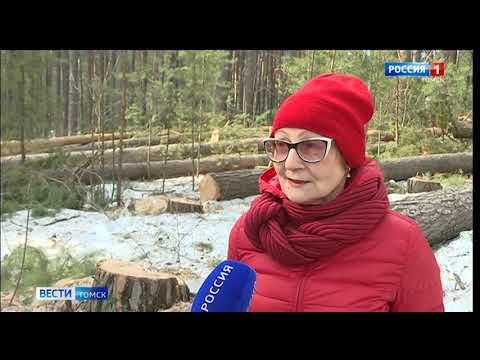 Вести-Томск, выпуск 09:00 от 06.04.2020