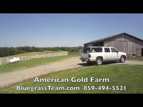 American Gold Farm Perryville, KY Kentucky farm house for sale