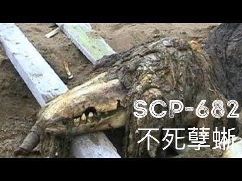 scp基金會 SCP-682 Hard