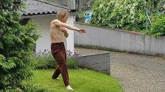 Shaolin Kung Fu Karate und Kampftrommel Kranich/Storch Schlange Affe Gedichte Shaman Fist