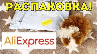 РАСПАКОВКА: лежак для морских свинок с AliExpress / SvinkiShow