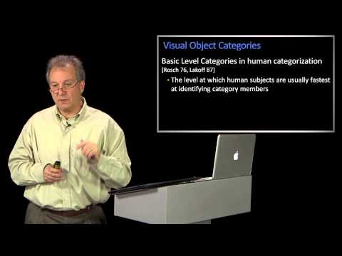 Visual Object Categories