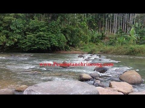 Wisata Ke Permandian Krueng Sawang