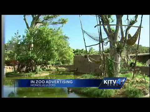 Ads at Honolulu Zoo could be a possibility