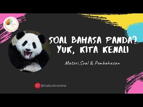 bahasa-panda?-mengenal-soal-viral-di-twitter