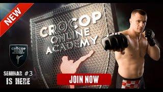 Mirko Cro Cop - Spectacular Highlight