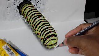 Drawing a 3D Worm - Optical Illusion