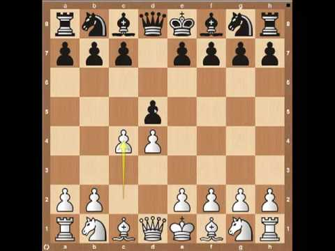 Chess Openings: The Queen