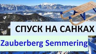 Спуск на санках с Zauberberg Semmering в Австрии на 1 Января С НОВЫМ ГОДОМ ДРУЗЬЯ