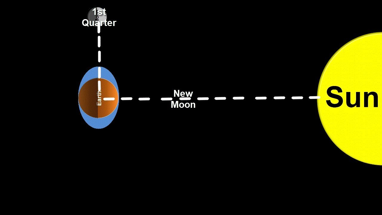 space science tutorial spring and neap tides [ 1280 x 720 Pixel ]