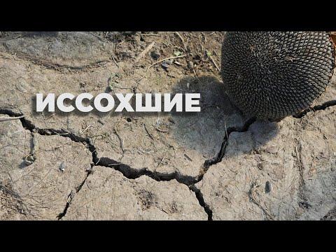 ИССОХШИЕ | Пострадавшие от гербицидов в Краснодарском крае| ЮГАНДА