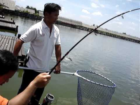 100 KG Giant Mekong Catfish  Fishing Thailand Bungsamrun !!! PART 11