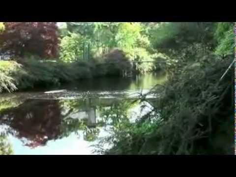 """Mount Usher Gardens"", Ashford, Co.Wicklow, Ireland."