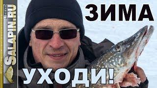 Прощание с зимним сезоном 2017-2018г. и планы на будущее [salapinru]