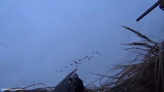 Весенняя охота на гусей  2017 с профилями