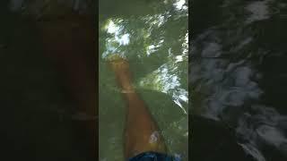 fish footspa muna sa buhol
