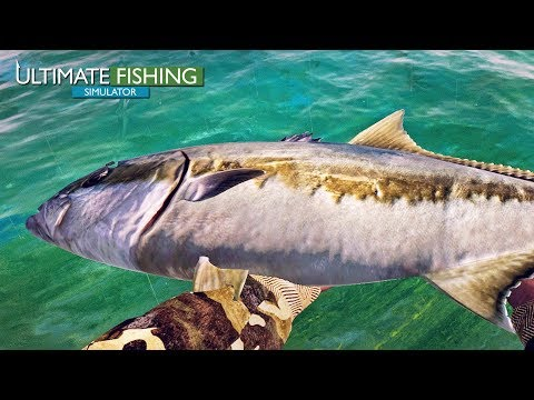 Ultimate Fishing Simulator - Bass And Amberjack Finally!