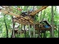 Amazing Treehouse - Explore the world