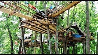 Amazing Treehouse - Explore the world