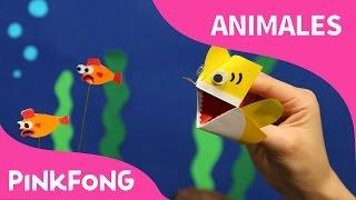 ¡Soy un Títere de Origami del Tiburón Bebé! | Animales | PINKFONG Canciones Infantiles thumbnail