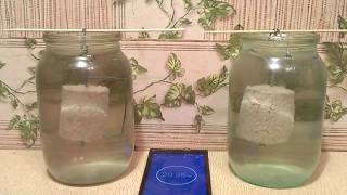 Изготовление технопланктона без пресса Эксперимент