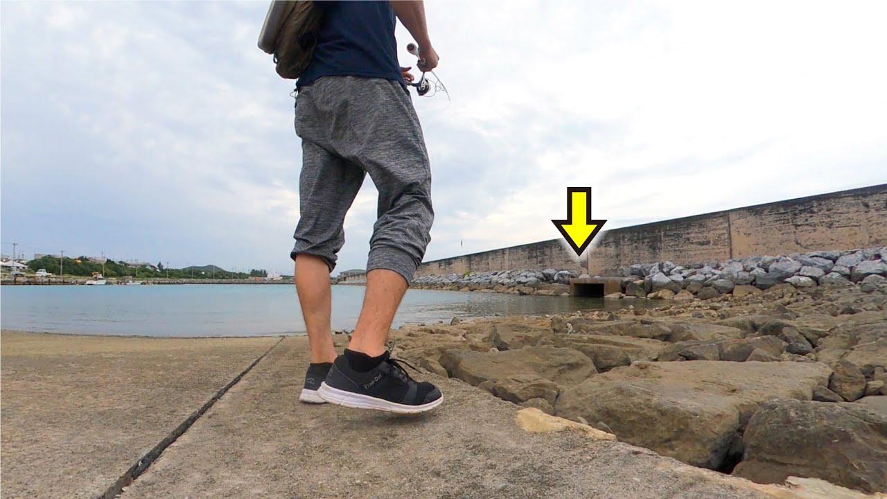 近場の港。石積みや水路など魚がいそうな場所にルアーを投げると…