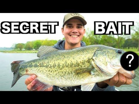 My SECRET Bed Fishing Lure!!!