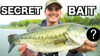 My SECRET Bed Fishing Lure!!!