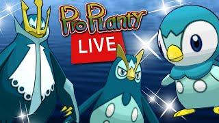 Piplup Community Day Live Shiny Hunt In Australia (Pokemon Go)