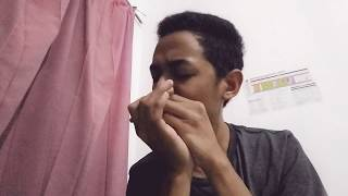 Indonesia Tanah Air Beta___harmonica cover