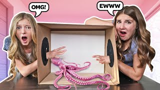 What's in the BOX Challenge With LIVE ANIMALS **FUNNY REACTIONS**📦 | Emily Dobson
