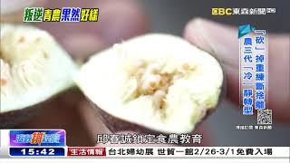 把老爸的棗子全砍光 農三代「果然」好樣 《海峽拼經濟》 @東森新聞 CH51