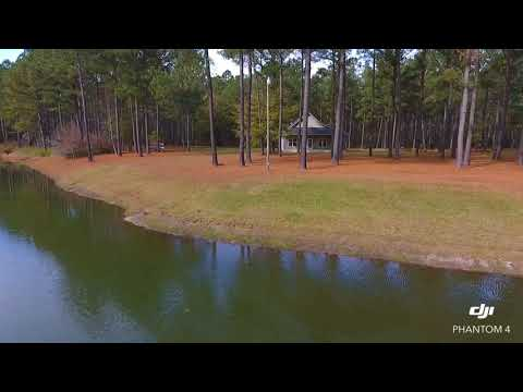 196.4 Acres of Residential and Timber Land in Edgecombe County NC!