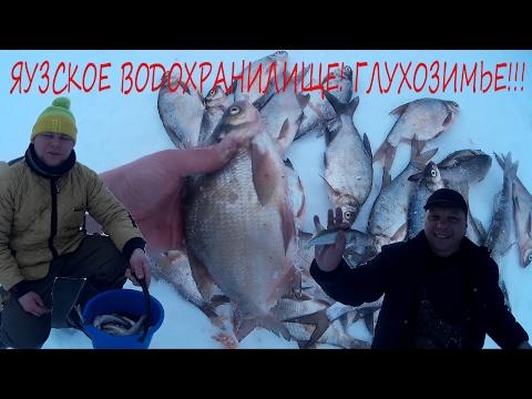 Рыбалка на яузе сегодня зимой 2019