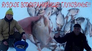 Зимняя рыбалка на яузском водохранилище. Глухозимье.(Отчет о рыбалке 11 и 12 февраля. Попытка поймать рыбу в глухозимье увенчалась успехом. Очень интересно. Всем..., 2017-02-13T04:02:35.000Z)